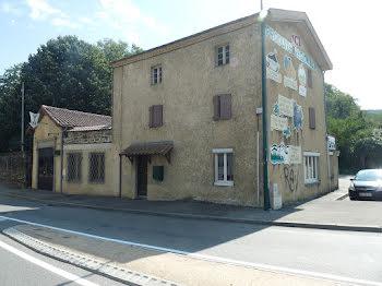 maison à Saint-Pierre-de-Boeuf (42)
