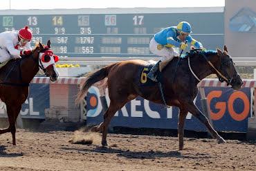 Doña Dasha (Grand Daddy) gana Handicap (1200m-Arena-HCH).