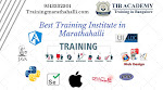Best IT Training and Placement Institutes in Marathahalli