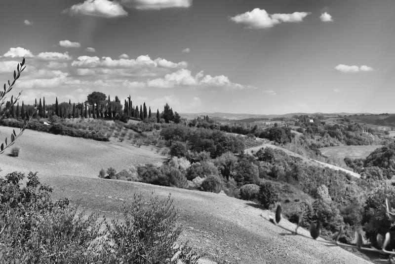 Toscana di GazzolaFrancesco