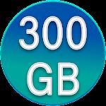 300gb Free Storage and backup 2018 11.0