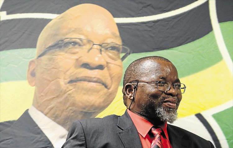 File photo of Gwede Mantashe.