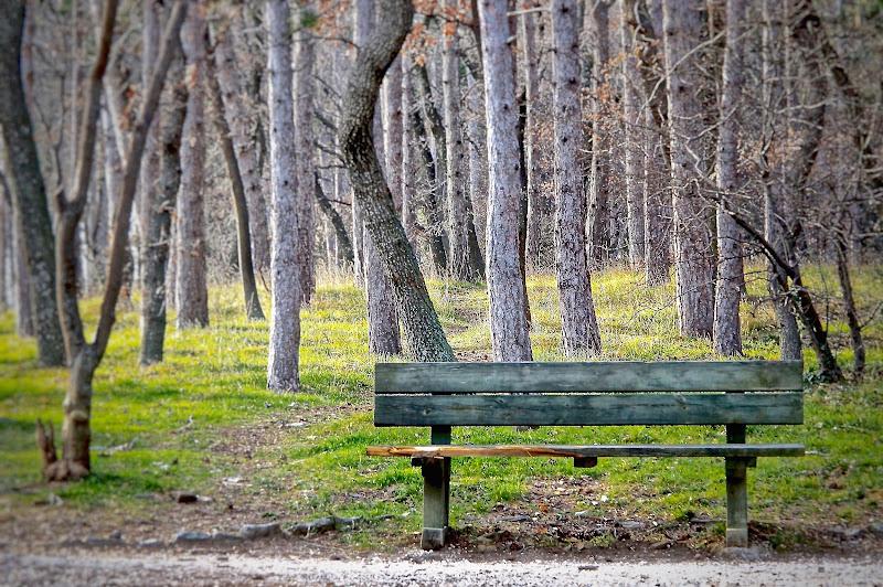 La panchina vuota... di Pink73