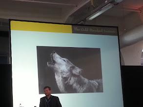 Photo: thomas bachheimer ~ stop being chiwawa, become a wolf again ~ http://jarogruber.blogspot.de/2015/11/edelmetalmesse.html