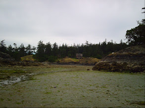 Photo: Home Bay on Jedediah Island at low tide.