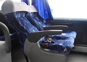 Bus Puno - La Paz (directo)