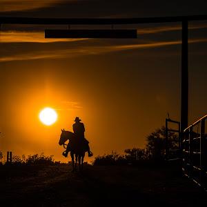 RonMeyers_Arizona-41.jpg