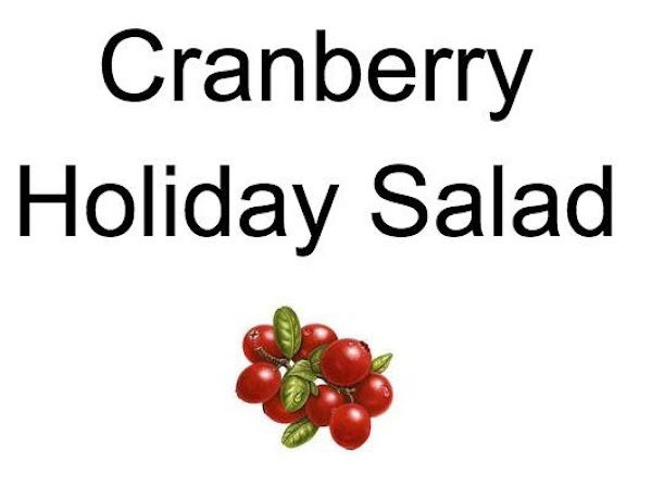 Cranberry Holiday Salad Recipe