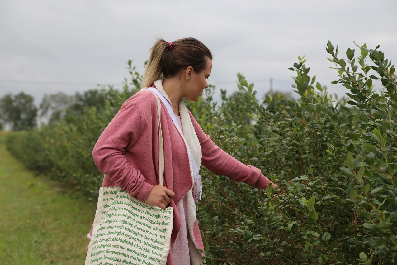 органические продукты органическая ферма киев органик тур натур бутик