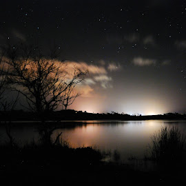 Waahi Lake at Night by Teodora Motateanu - Landscapes Starscapes
