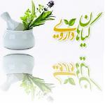گیاهان دارویی و طب سنتی 1