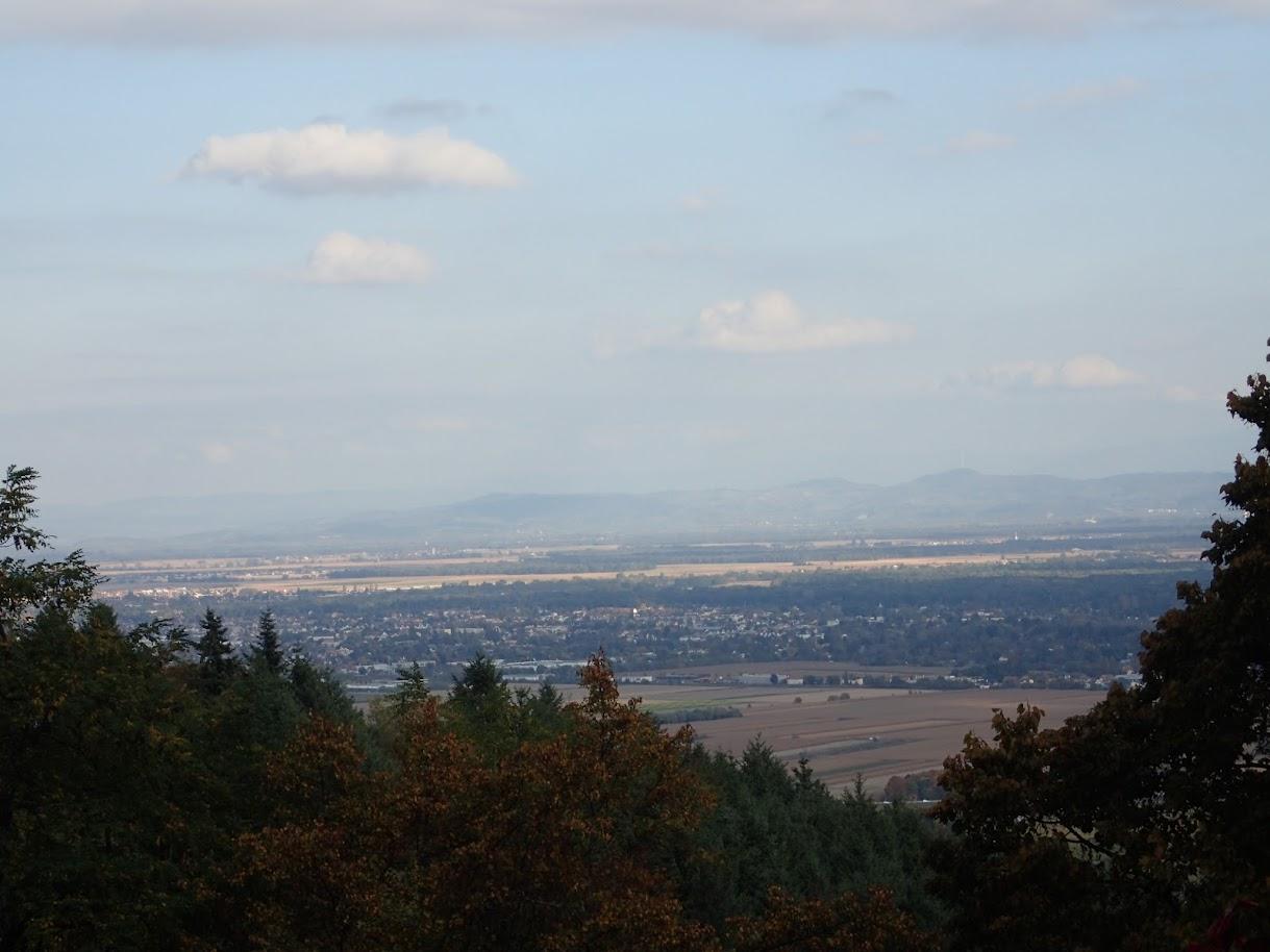 vue sur la plaine d'Alsace depuis le Hagueneck