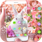 Cute bunny Theme happy easter
