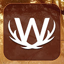 Word Wild 1.0.6A APK Download