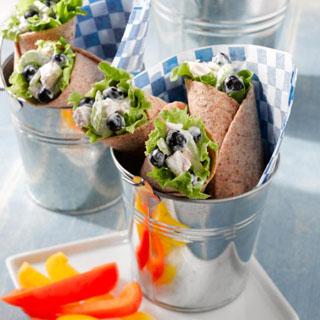 Blueberry Chicken Salad Wraps By Rachel Bertone - October 3, 2012