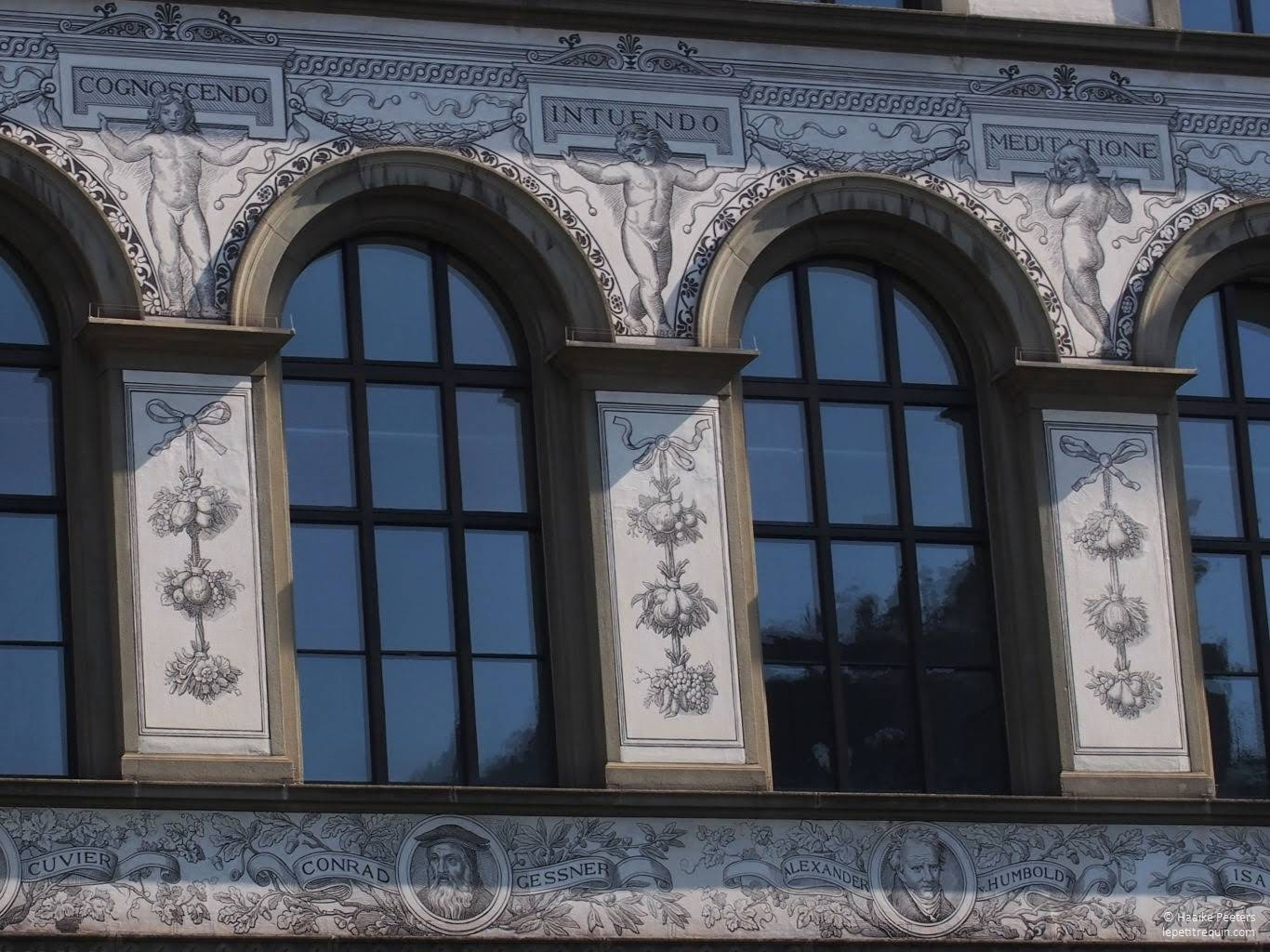 ETH Hauptgebäude Zürich (Le petit requin)