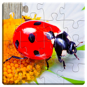 Kids Games Bugs Jigsaw Puzzles