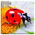 Insect Jigsaw Puzzles Game - For Kids & Adults 🐞