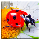 Insect Jigsaw Puzzles Game - For Kids & Adults icon