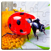Insect Games Jigsaw Puzzles