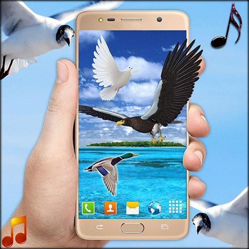 Flying Birds Live Wallpaper 3D Phone Backgrounds