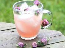 Red Clover Lemonade Recipe