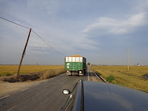 Photo: A lorry load of rice heads off to the storage depot