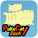 PukuCatDash icon