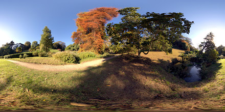 Photo: Autumn in Glendurgan