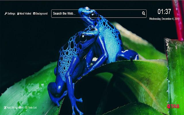Animal Wallpapers Animal New Tab HD