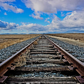 Tracks to Tomorrow by Barbara Brock - Transportation Railway Tracks ( idaho, train tracks, railroad tracks, isolation, empty railway tracks, prairie )