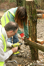 Photo: David and Emma work on the new fence