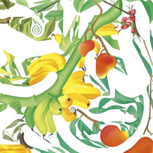 Faune et Flore - Anne Margot Ramstein - Edition Les grandes personnes - blog illustration jeunesse Illustre Albert