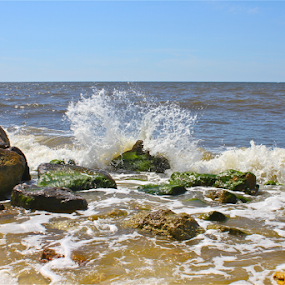 Slimy Splash by Susannah Lord - Landscapes Beaches ( water, slimy, mexico, florida, waves, gulf, wave, alligator point, crashes, rocks, slimy rocks,  )