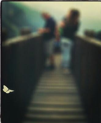 Voglia di volare.., di elilion88