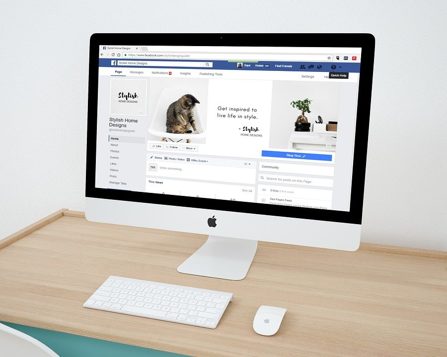 A business' Facebook page