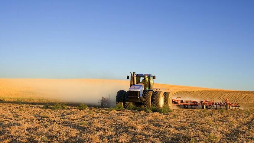 Han recibido más de 231.000 Solicitudes Únicas de ayudas de la Política Agrícola Común (PAC).