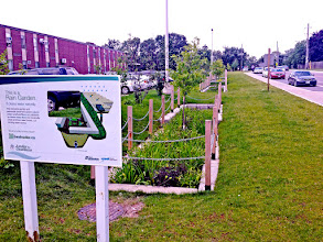 Photo: Educating the public about eco-landscaping, including bioretention cells (engineered #rainscapes) is a large part of what we do at Fern Ridge Landscaping! Created in association with Credit Valley Conservation and Aquafor Beech.