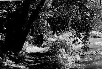 Photo: Święta Lipka 1987 ścieżka nad jeziorem przy klasztorze