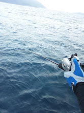 Photo: 本日、初おろしのブルーニングハーツの「スローシャフト」です。・・・がんばれ!オオイシさん!