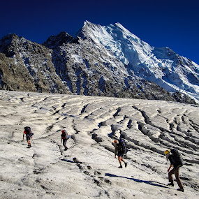 by Matthew Robertson - Sports & Fitness Climbing ( glacier, southern alps, mt. cook, climbing, mountaineering )