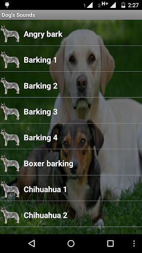 Dog's Sounds