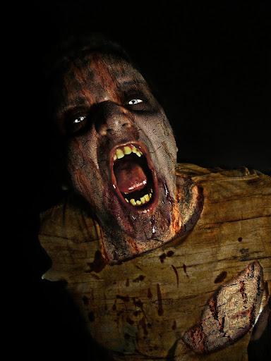 Zombie News 360
