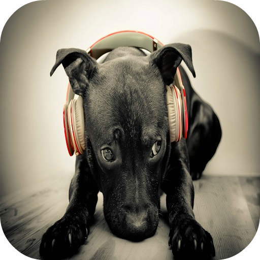 犬の音 音樂 App LOGO-硬是要APP
