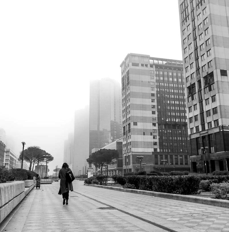 In the fog di Alexphoto