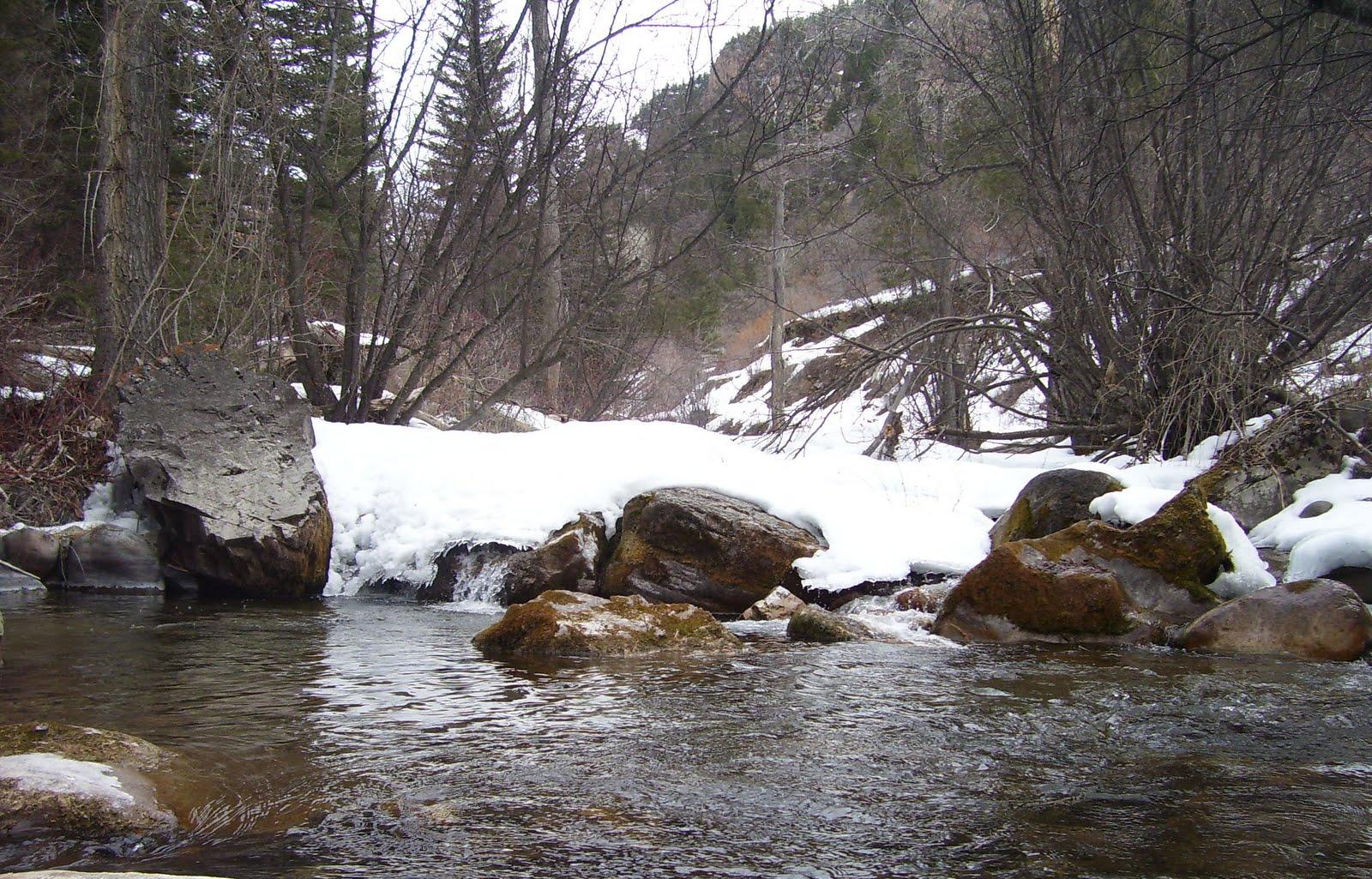 Photo: East Elk Creek