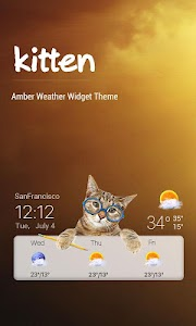 Cat weather widget wallpaper screenshot 0