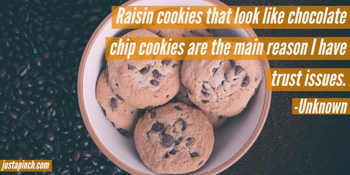 """""""Raisin cookies that look like chocolate chip cookies are the main reason I have trust issues."""""""