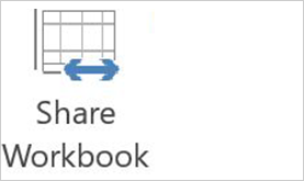 Share workbook in 2013 version