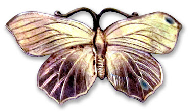 Photo: Silver Butterfly- Any Site - =3rd